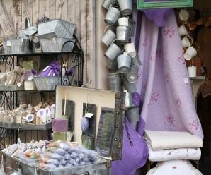 lavender-537864_640